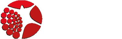 logo_praxis_schlote